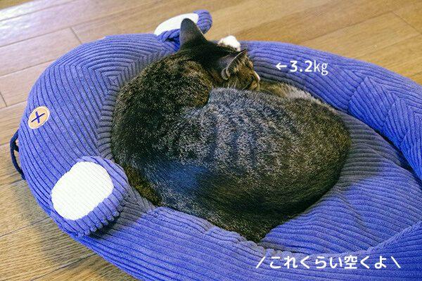 フェリシモ猫部のネズミさんベッドで寝ている3.2㎏の成猫。