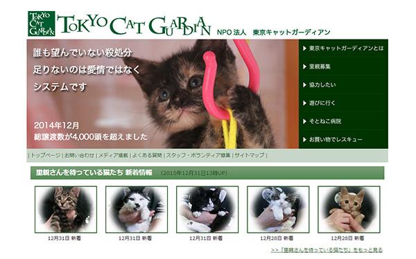 tokyo-cat