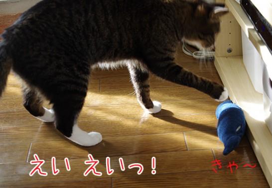 ウールサッキング対策に、猫キッカーを手作りしてみたよ。