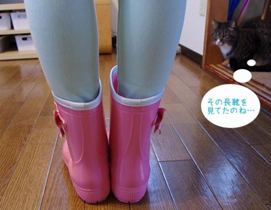 rain-boots03
