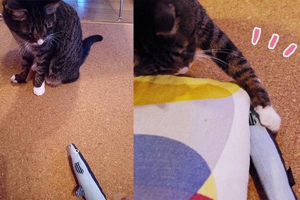 USEDo × 猫部 古着屋さんで見つけたような味わい深いデニムさかなの会にちょっかいを出して遊ぶ猫。