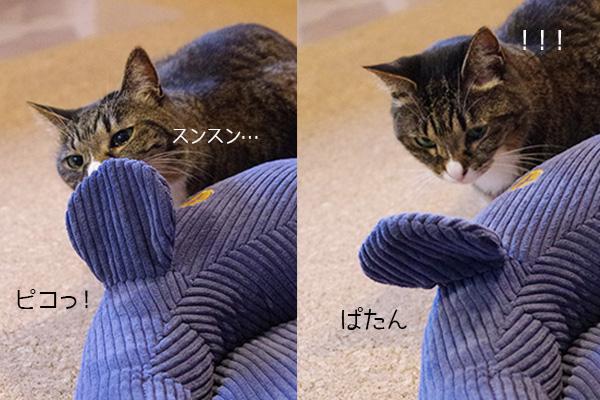 フェリシモ猫部のネズミさんベッドの耳に反応する猫。