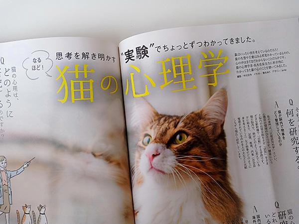 雑誌ねこのきもち20209月号猫の心理学