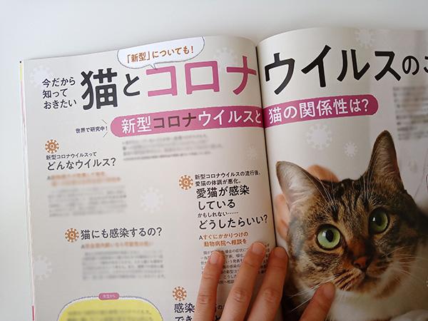 雑誌ねこのきもち20209月号の感想