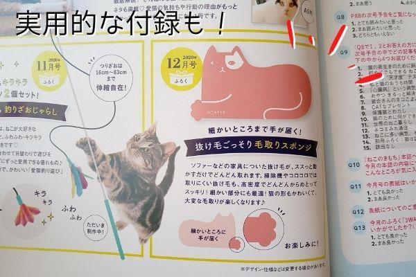 雑誌ねこのきもち2020年12月号付録は猫の毛が取れる便利グッズでした。