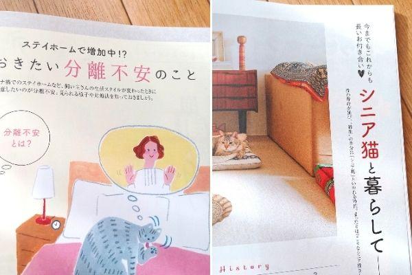 雑誌ねこのきもち2021年3月号の紙面より分離不安について、シニア猫との暮らしについて紹介するコーナー。