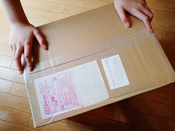 布ナプキンnunona3D福袋の大きさ
