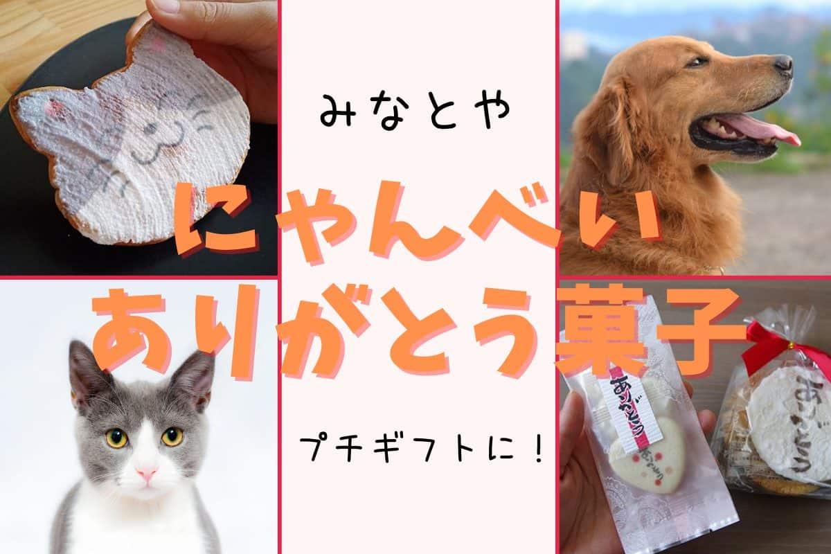 【にゃんべい】猫好きさん腰砕けのかわいい煎餅!人気のありがとう菓子もレビュー【みなとや】