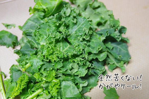 Oisixオイシックスの野菜を食べてみた体験した口コミ
